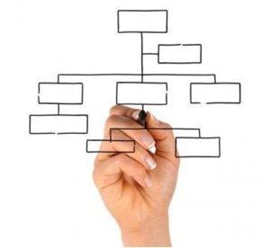 Organigrama empresarial: todas las respuestas que buscabas