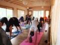 Yoga Tatili