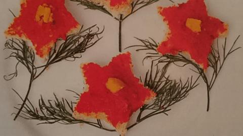 Детски сандвичи цветя със звезда