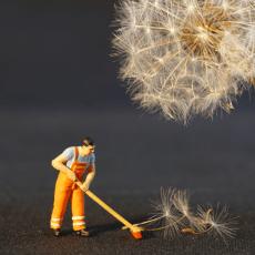 Предимства и недостатъци на професионалното почистване на дома ви