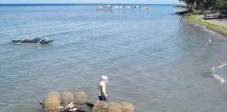 silliman beach