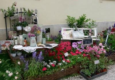 negy-evszak-kerteszet-fehérvárcsurgó 2013 (2)