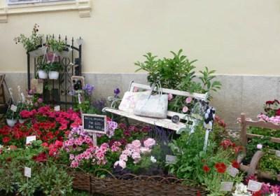 negy-evszak-kerteszet-fehérvárcsurgó 2013 (3)