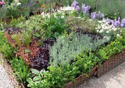 negy-evszak-kerteszet-rózsakert 2013 (4)