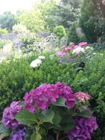 negy-evszak-kerteszet-siofok-bemutato-kert (16)