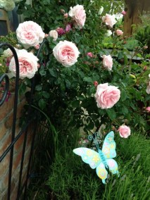 negy-evszak-kerteszet-siofok-bemutato-kert (35)