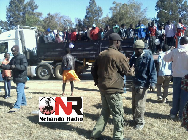 File Picture: Zanu PF has a tendency of endangering its supporters by packing them into these trailers while transporting them to party functions