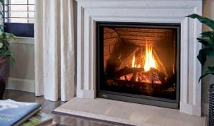 enviro fireplace