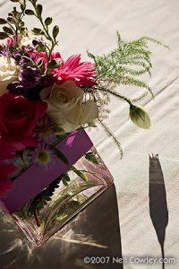 050-weaver-ridge-peoria-wedding-photographer 050-weaver-ridge-peoria-wedding-photographer
