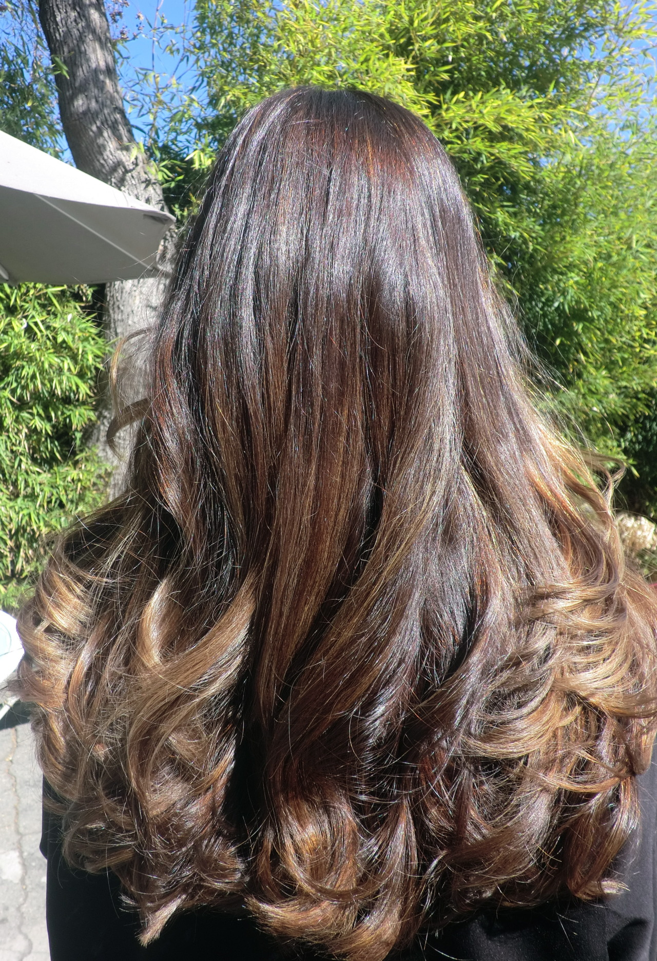 Chocolate Brunette With Ash Blonde Highlights Neil George