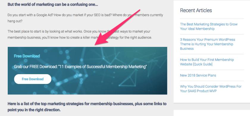 The Best Marketing Strategies to Grow Your Ideal Membership MemberDev
