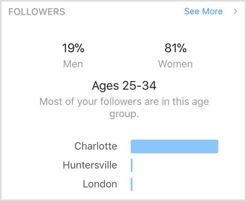 Follower demographics social media audit