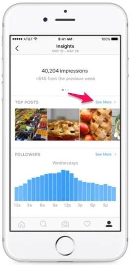 Insta insights social media audit