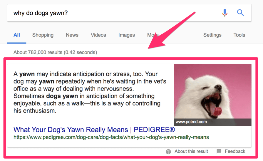 featured snippet 1