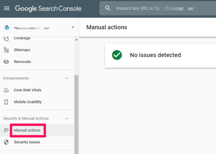 improve google rankings - manual actions