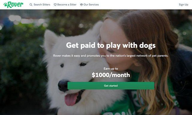 Home Business Ideas - Pet Sitting