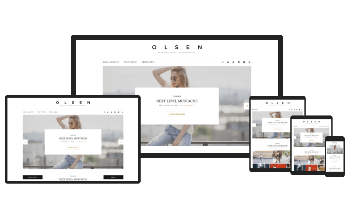 Olsen demo pages for Best WordPress Themes for Blogs