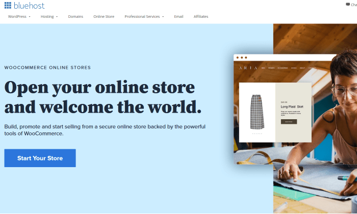 Bluehost stores for Best Ecommerce Platforms