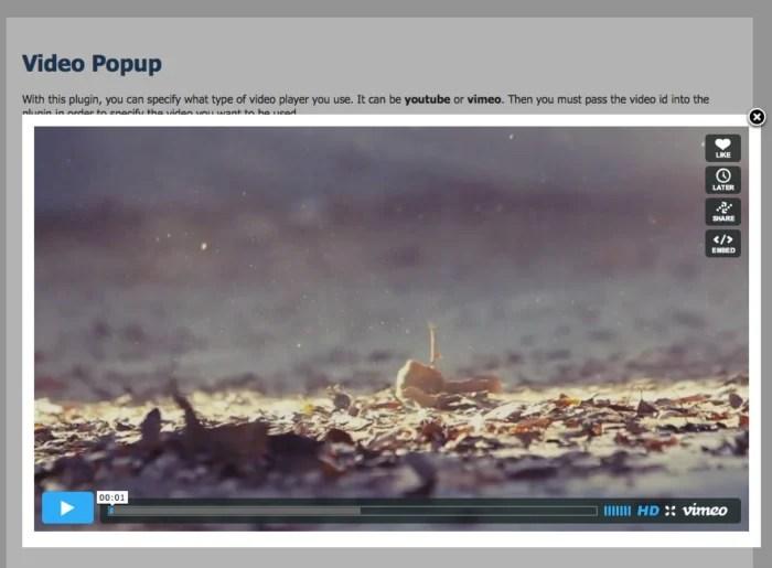 YouTube and Vimeo Popup Plugin