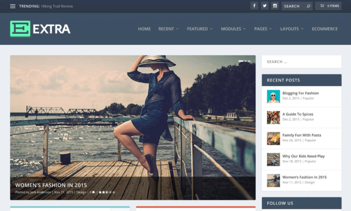 Extra demo page for Best WordPress Themes for Blogs