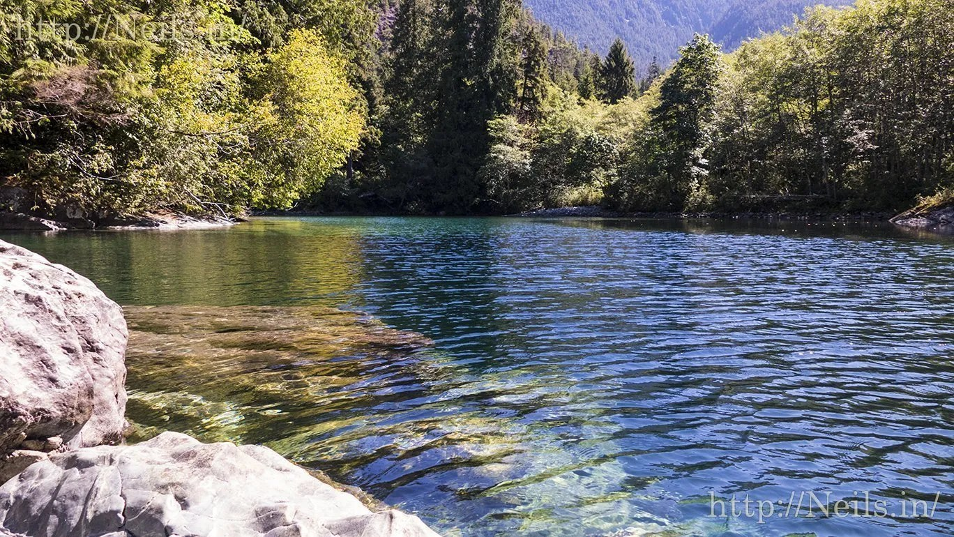 The creek I went to go swimming in near Tofino