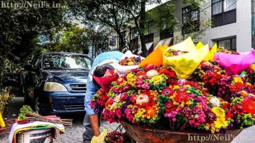 Flower peddler in Coyocan