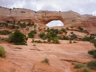 Wilson Arch