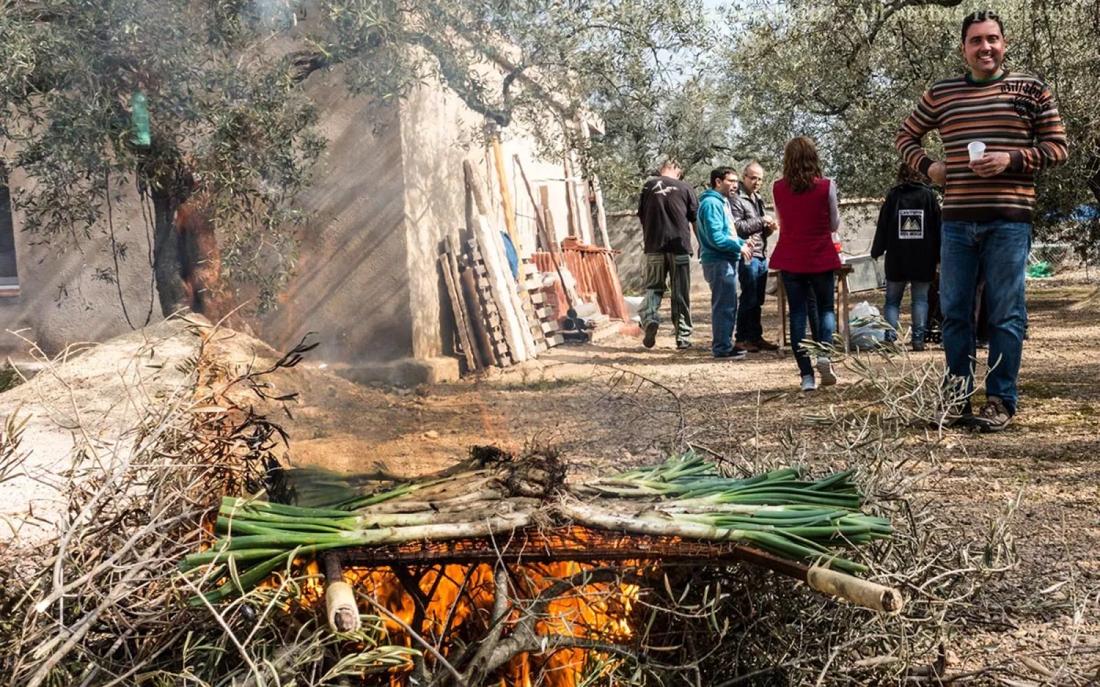 Calçots on the Fire