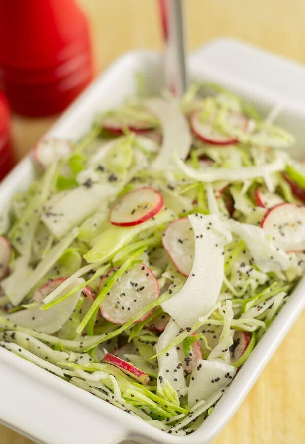 This cabbage and radish slaw is a wonderfully quick, freshly tasting and healthy side dish to go with your BBQ's and salads! The low fat dressing is made lighter by using half yogurt combined with reduced fat mayonnaise and spiced up with just a little cider vinegar. At only 62 calories a serving, there's no guilt with piling this high on your plate!