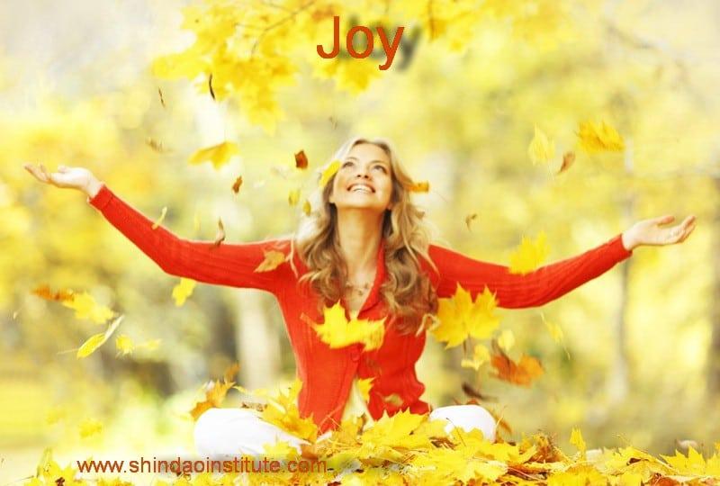 Joy - 7 Secrets