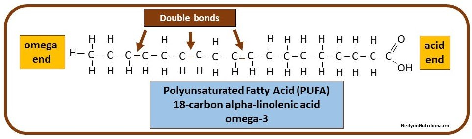 polyunsaturated fatty acid