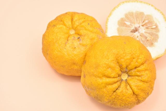 20101002冬至にゆず湯に入るのはなぜか柚子風呂のやり方と効能エコ的な作り方