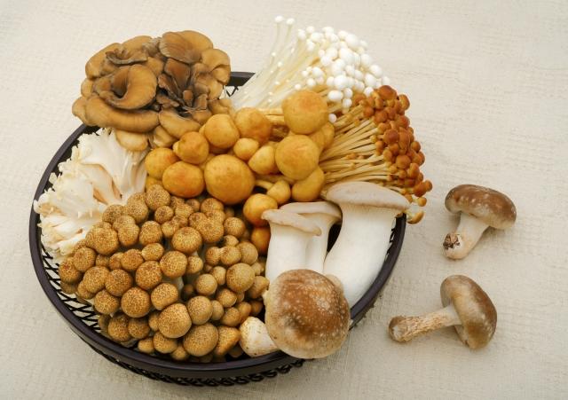 秋の味覚きのこの栄養パワー!効果効能と秋冬に旬を迎える理由