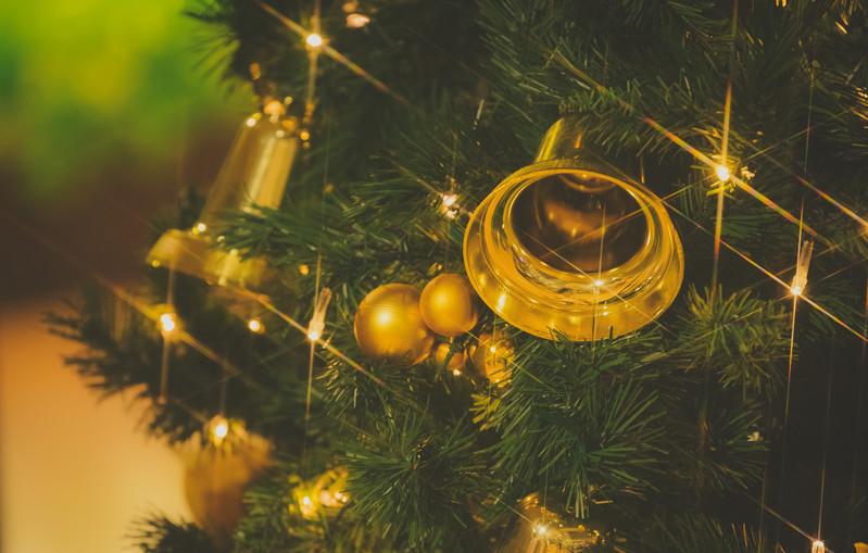 クリスマスツリーがもみの木なのはなぜ?使われる理由と由来5選!