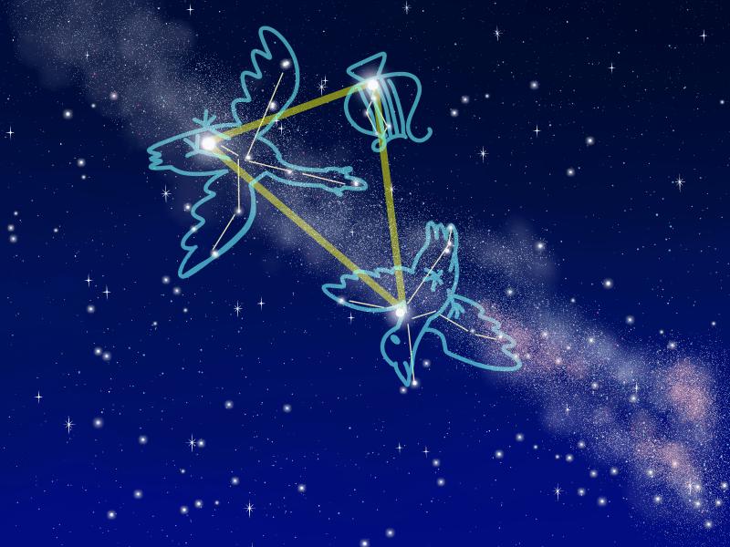 4月こと座流星群2019年はいつ?ピーク時間や方角 観測場所の注意点は?