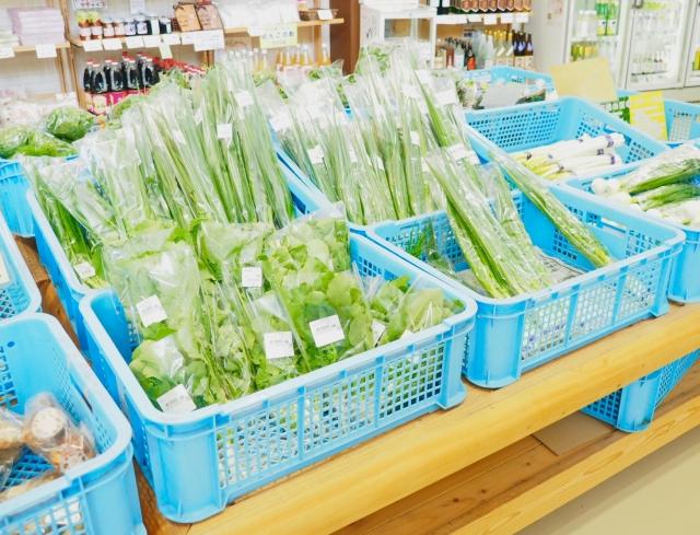 水菜と京菜と壬生菜の違いと見分け方は?栄養と味や値段はどう違う?
