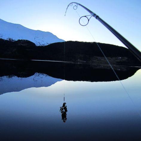 Dagens nesten-fangst