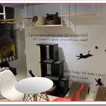 猫カフェ京都ワンラブのアクセスは?利用料金や営業時間は?