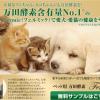 猫用万田酵素の価格や安全性は?便秘効果の評判(口コミ)や体験談まとめ!