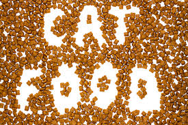 猫が食べてはダメなものから考える本当に猫のためになるフード選び