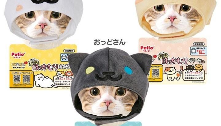 変身ほっかむりで猫が猫のコスプレ!?ねこあつめ人気キャラに仮装
