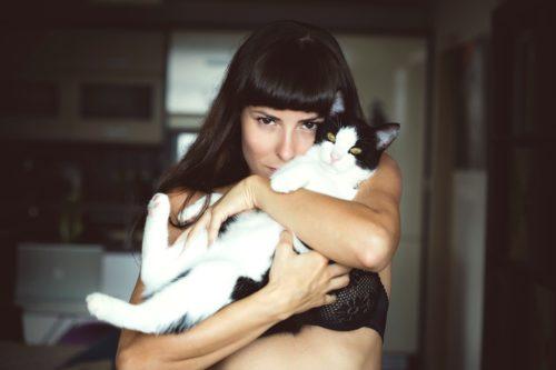 猫がべったりと寄り添ってくれてかわいい!本当の理由と意味は・・