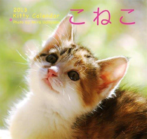 1b06afc68f1581c74a5cdb81661439dd - 前方不注意にも程がある子猫