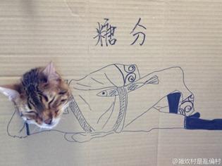 9555045059 thumb4 - 「段ボール×猫=コスプレ」の破壊力の強さが異常