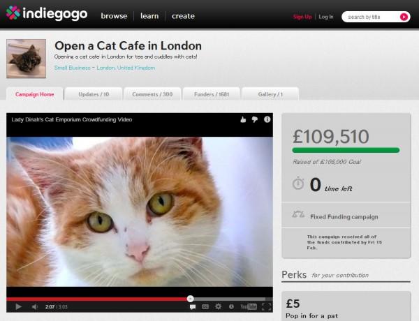 130528catcafeatlondon 600x460 - 猫カフェクラウドファンディングが成立し、ロンドンにも猫カフェが誕生の機運