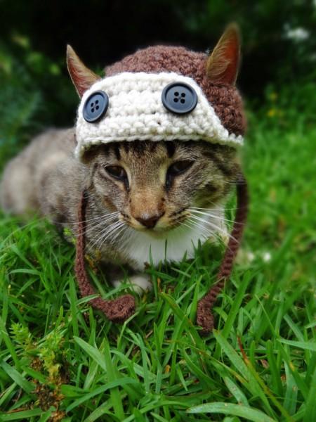 130608cathat02 450x600 - 結構かわいい、毛糸の猫用帽子