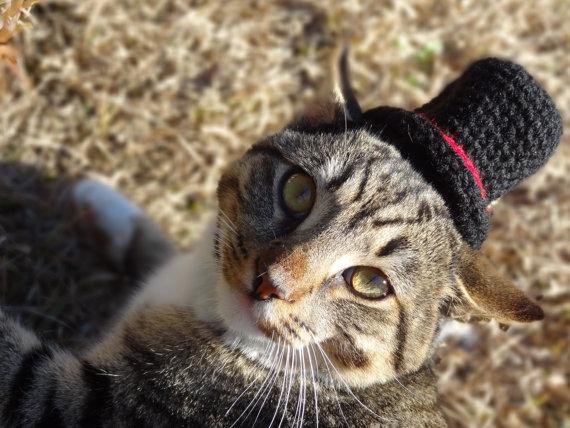 130608cathat04 - 結構かわいい、毛糸の猫用帽子