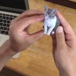 3Dプリンタで猫フィギュアを作ってくれるサービス「Petfig」