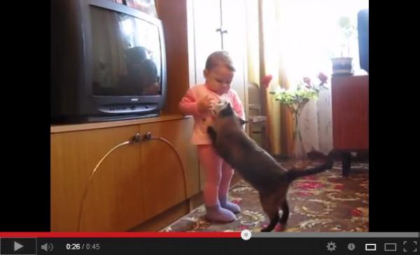 130806cat 600x365 - 赤ん坊から子猫を取り戻す、母性にあふれる親猫(動画)