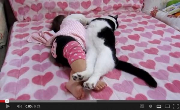 130807catandbaby 600x365 - ハートフルすぎる、猫と赤ちゃんのお昼寝動画
